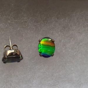 Jewelry - Extinct Ammolite Studs